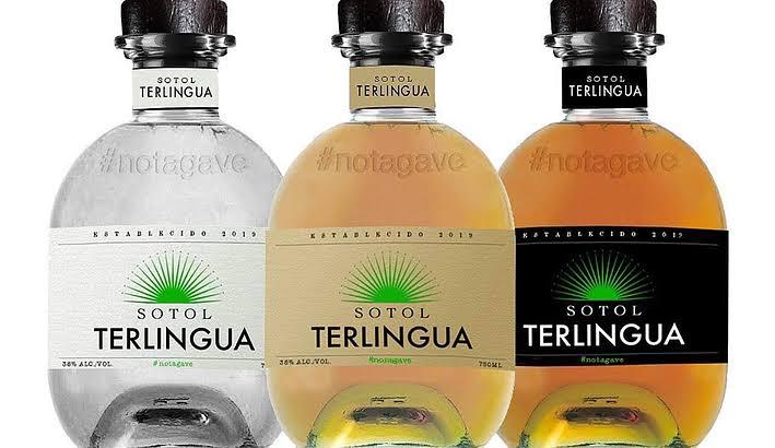 Sotol minuman khas meksiko penuh warna