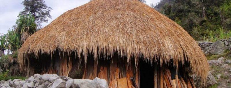 rumah adat papua honoi