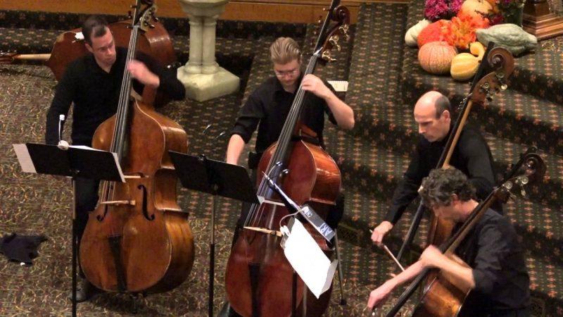 double bass, alat musik gesek dunia