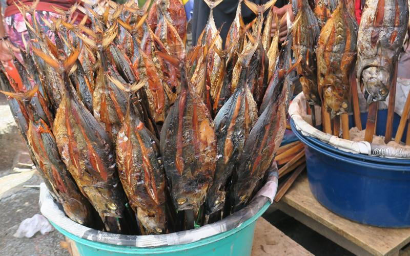 ikan komu ashar menjadi makan khas maluku
