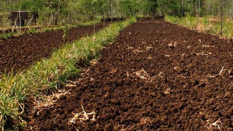 jenis tanah berdasarkan bentuknya