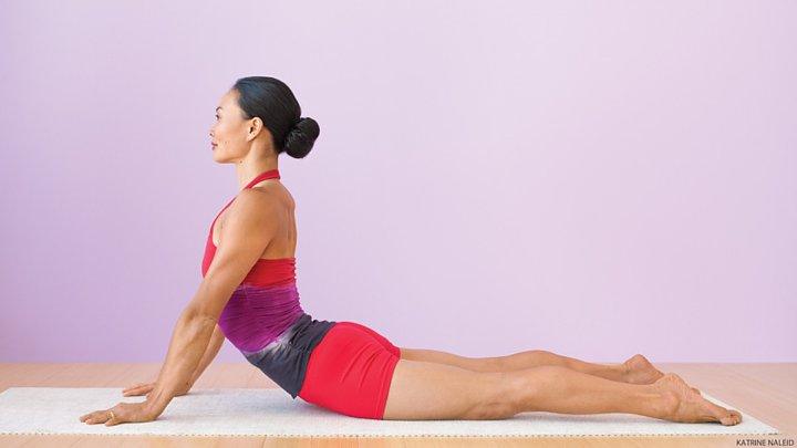 melatih otot punggung